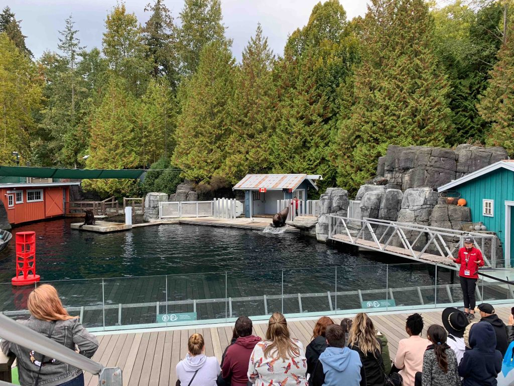 Look at this beautiful setting for the sea lion show.