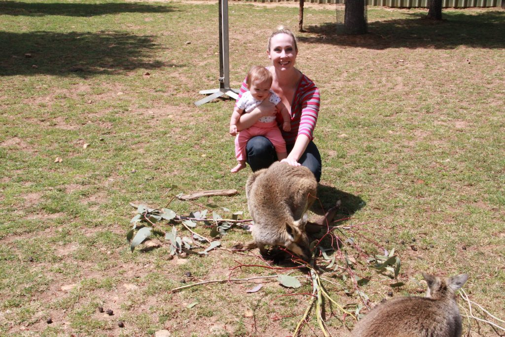 A gentle pat for this wallaby at the Canberra Zoo.