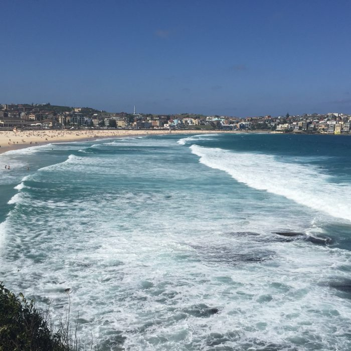 Bondi Beach - I wonder if there are any little Nemos swimming out there?