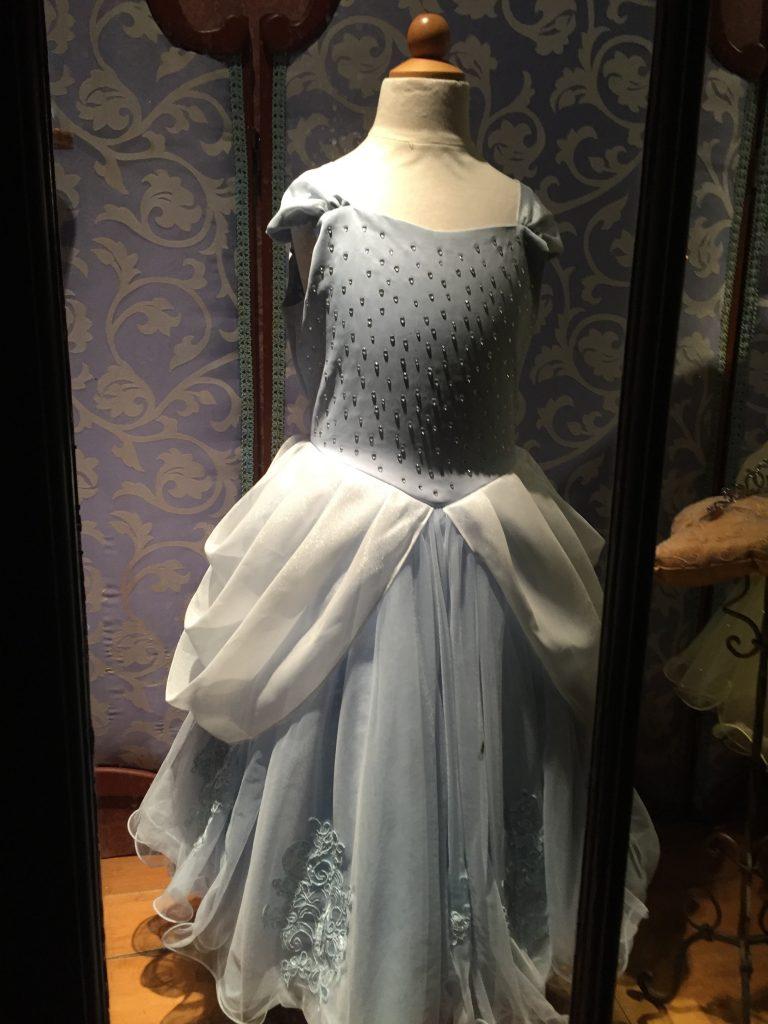Children's Cinderella Costume. Disneyland Halloween Party